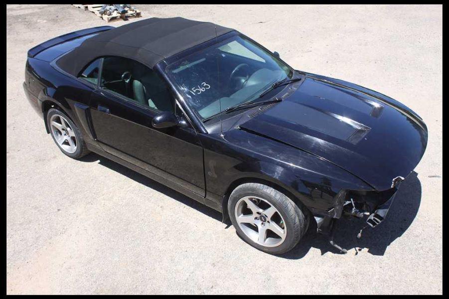 Mustang Terminator Wing